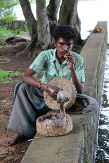"Snake ""charmer"", Kandy, Sri Lanka"