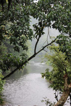 Borderlands, Kithulgala,Sri Lanka