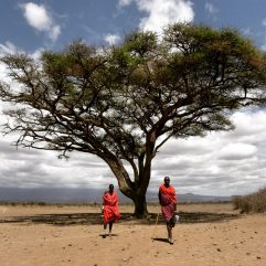 Amoboseli National Park, Kenya