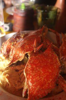Crab Curry, Elita's, Galle, Sri Lanka