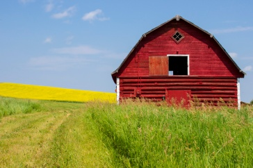 My Red Barn - not remotely famous or internationally acclaimed.