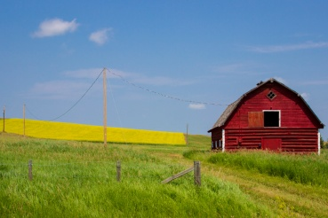 More red barn