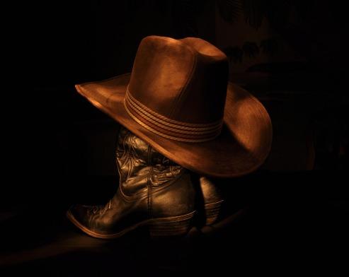 cowboy-1129345_1280